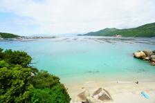 もちろん今年も!南国高知沖の島→柏島!GWスペシャルツアー