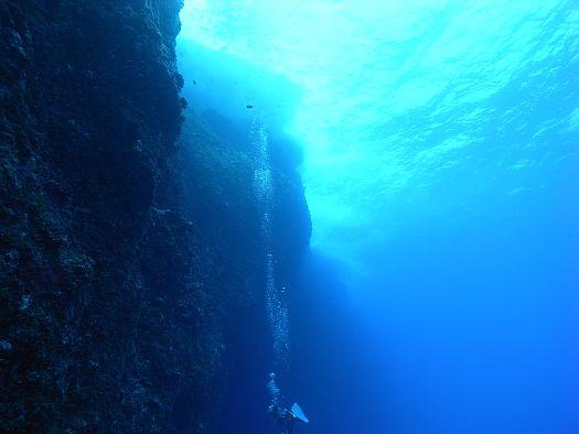 和歌山 ダイビング
