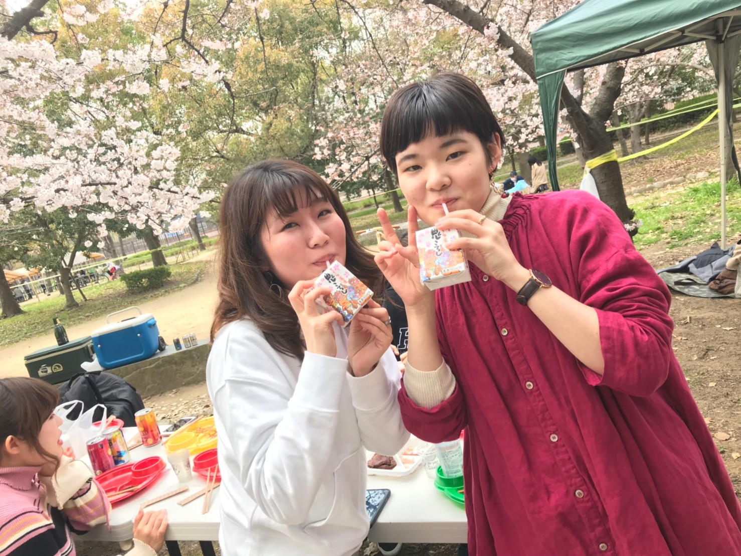 2019330お花見_190401_0088.jpg