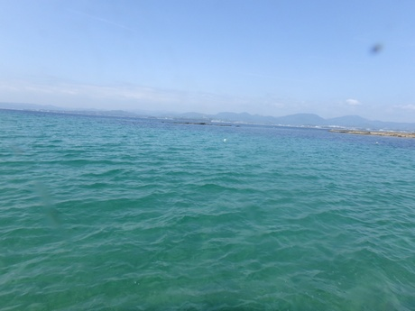白浜の海の画像