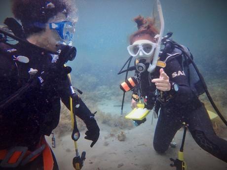 実際に海で潜る